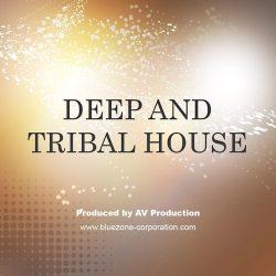 Bluezone Corporation Deep & Tribal House WAV