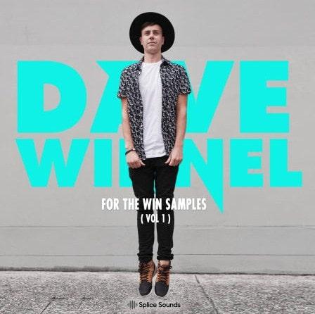 Splice Sounds Dave Winnel For The Win Samples Vol 1 WAV