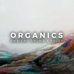 Organics - Ambient Drums & Foley WAV MIDI