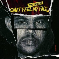The Weeknd - Can't Feel My Face (Remix Stems)