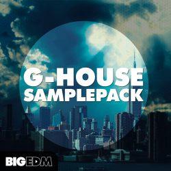 Big EDM G HOUSE Samplepack WAV MIDI PRESETS