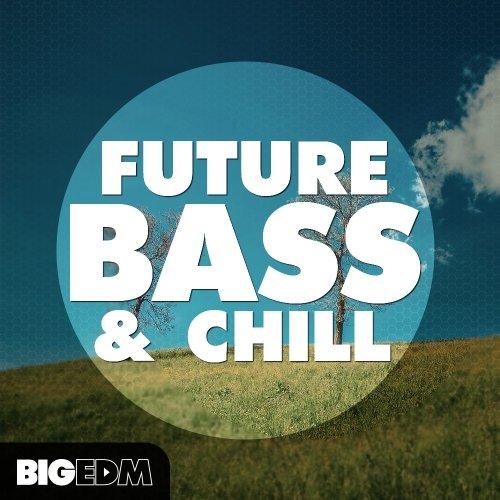 Big EDM Future Bass & Chill