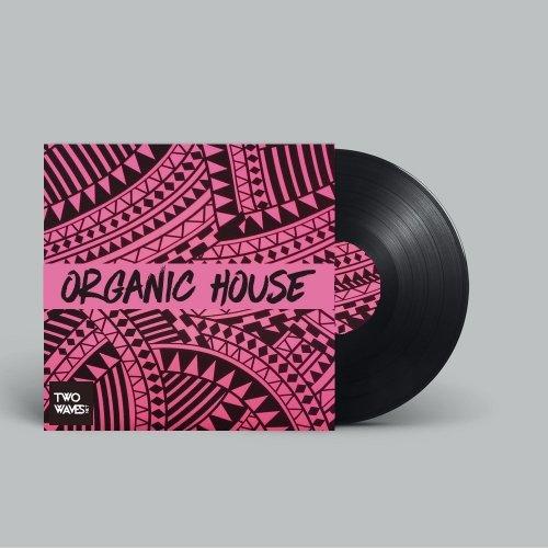 Two Waves Organic House WAV MIDI