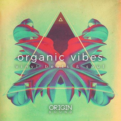 Organic Vibes - Vinyl Beats & Soul WAV MIDI