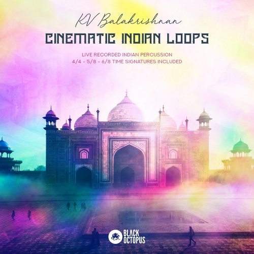 Cinematic Indian Loops WAV