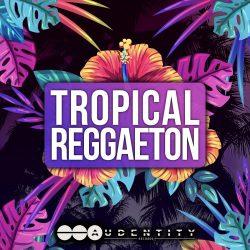 Tropical Reggaeton WAV MIDI PRESETS