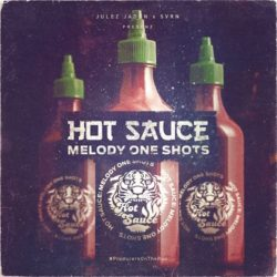 JJ Hot Sauce: Melody One Shots WAV