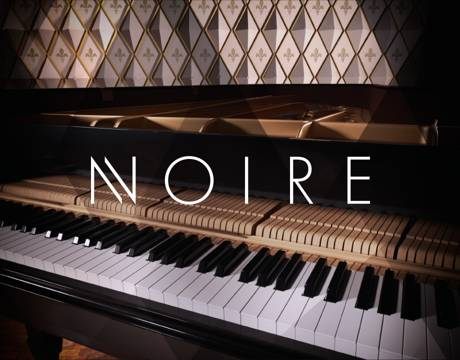 Native Instruments Noire v1.0.0 KONTAKT-SYNTHiC4TE