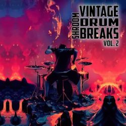 Shroom Vintage Drum Breaks Vol.2 WAV