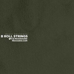 MSXII Audio B-Roll Strings 1 & 2