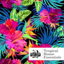 RA Tropical House Essentials WAV