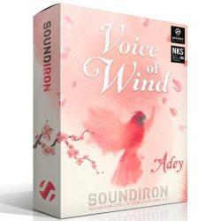 Soundiron Voice of Wind: Adey KONTAKT