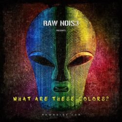RawNois3 What Are These Colors? WAV