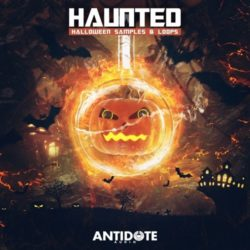 Antidote Audio Haunted: Halloween Samples & Loops WAV MIDI