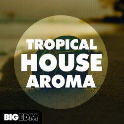 Tropical House Aroma WAV MIDI PRESETS