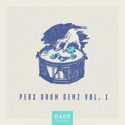 RARE Percussion Perx Drum Gemz Vol.1 WAV