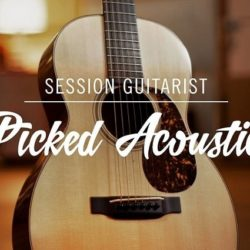 Native Instruments Session Guitarist Picked Acoustic v1.0 KONTAKT-DECiBEL