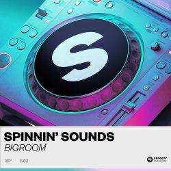 Spinnin' Sounds Big Room Sample Pack WAV