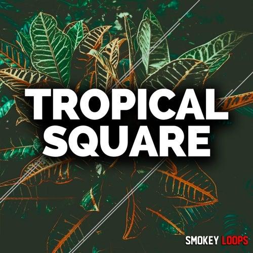Smokey Loops Tropical Square WAV MIDI