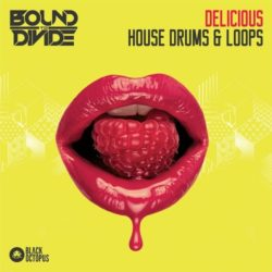 BOS Delicious House Drums & Loops WAV