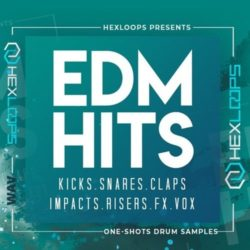 Hex Loops EDM Hits WAV MIDI