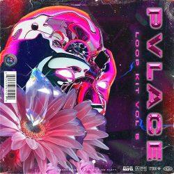 PVLACE Loop Kit Vol 5 WAV