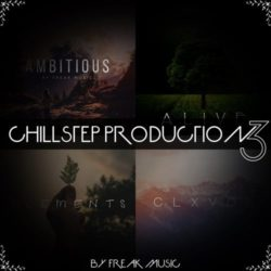 Freak Music Chillstep Production 3