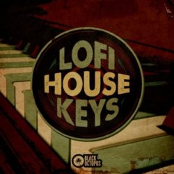 Lofi House Keys WAV