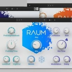 Native Instruments Raum v1.0.0 WIN & MacOSX