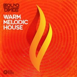 Warm Melodic House by Bound To Divide WAV MIDI PRESETS