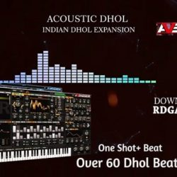 RDGAudio Acoustic Dhol VPS Avenger Expansion
