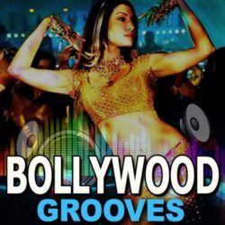 Zion Music Bollywood Grooves Vol.1 WAV