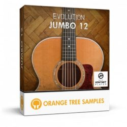 Evolution Jumbo 12 Kontakt Library