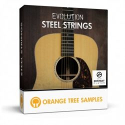 Evolution Steel Strings v1.1.68 Kontakt Library
