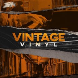 Vintage Vinyl: Old School Hip Hop WAV