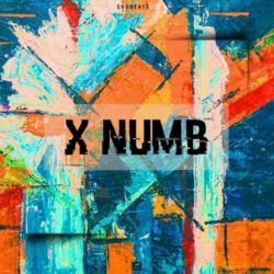 Shobeats X Numb WAV MIDI PRESETS