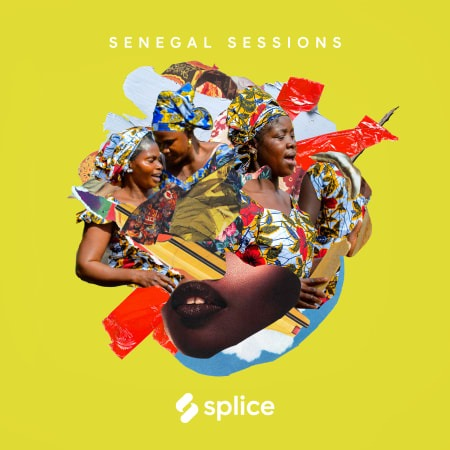 Splice Sessions Senegal Sessions WAV MIDI