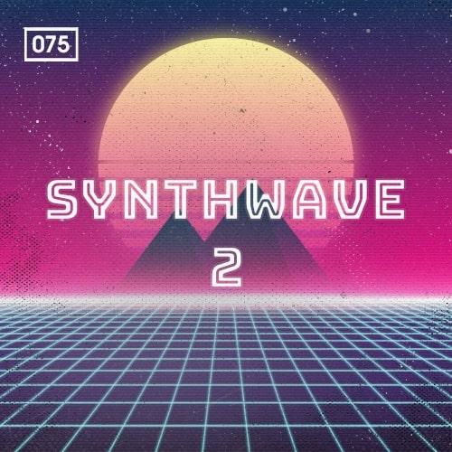 Bingoshakerz Synthwave Vol 2 WAv MIDI