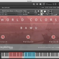 Evolution Series World Colors Bawu KONTAKT