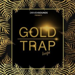 DRIVENSOUNDS Gold Trap Loops WAV