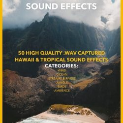 Jakob Owens Productions Tropical Hawaii Sound Effects Pack Vol.1 WAV