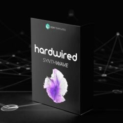 EDM Templates Hardwired Synthwave X Midtempo Bundle