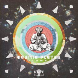 RARE Percussion Cosmic Flutes Vol.3 WAV