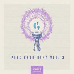 RARE Percussion Perx Drum Gemz Vol.3 WAV