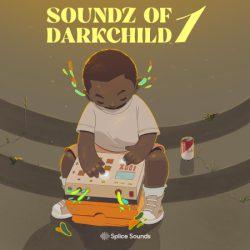 Splice Soundz of Darkchild 1 WAV