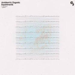 SM219 Ambient & Organic Experiments WAV