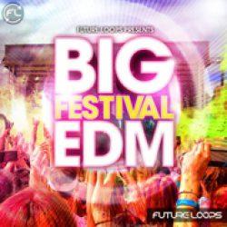 Big Festival EDM