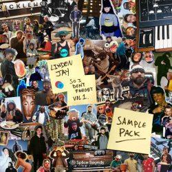 Linden Jay So I Dont Forget Sample Pack