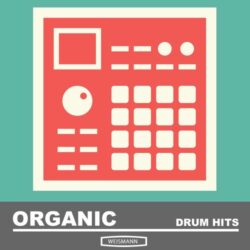 Organic Drum Hits