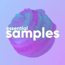 Sounds Like You The Essential Bundle MULTIFORMAT